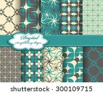 set of vector abstract pattern... | Shutterstock .eps vector #300109715