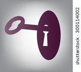 vector key in keyhole    Shutterstock .eps vector #300114002