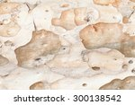 background texture of tree bark.... | Shutterstock . vector #300138542