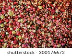Stock photo closeup image of beautiful flowers wall background with amazing red and white roses 300176672