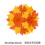 autumn leaves background | Shutterstock .eps vector #300192308