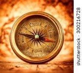 vintage still life. vintage... | Shutterstock . vector #300216728