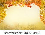Red And Yellow Fall Foliage...