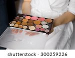 palette with makeup in the... | Shutterstock . vector #300259226