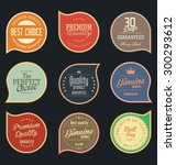 modern badges collection | Shutterstock .eps vector #300293612