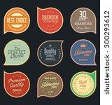 modern badges collection | Shutterstock .eps vector #300293612