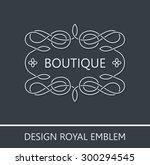 vector ornament emblem baroque...   Shutterstock .eps vector #300294545