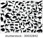 big animal collection vector   Shutterstock .eps vector #30032842