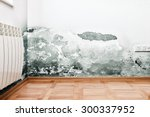 mold and moisture buildup on... | Shutterstock . vector #300337952