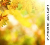 abstract autumnal backgrounds... | Shutterstock . vector #300356045