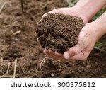 compost soil  organic plant... | Shutterstock . vector #300375812
