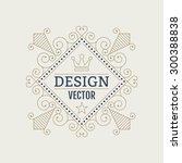 vector illustration. luxury... | Shutterstock .eps vector #300388838