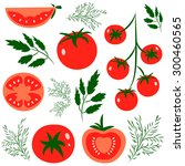 set of fresh healthy red... | Shutterstock .eps vector #300460565
