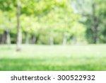 city park bokeh background for... | Shutterstock . vector #300522932