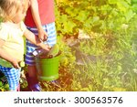 Kids Harvesting Cucumbers In...