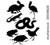 animals silhouette | Shutterstock .eps vector #30058828