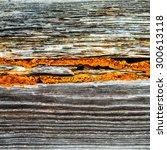 wooden line texture | Shutterstock . vector #300613118
