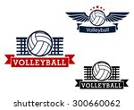 volleyball sporting icons with... | Shutterstock .eps vector #300660062
