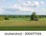 beautiful green fields under... | Shutterstock . vector #300697436