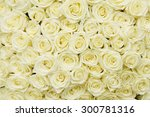 Stock photo isolated close up of a huge bouquet of white roses 300781316