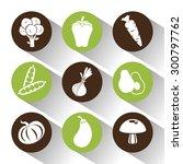 healthy food design  vector... | Shutterstock .eps vector #300797762