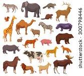 big wild domestic and farm... | Shutterstock .eps vector #300798446