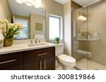 nice bathroom with glass shower ... | Shutterstock . vector #300819866