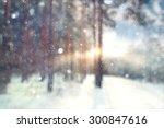 Blurred Background Forest Snow...