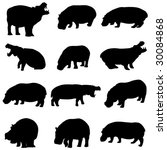 the outline of hippo in africa | Shutterstock .eps vector #30084868