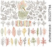 Herbarium. Different Types And...