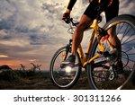 mountain bike cyclist riding... | Shutterstock . vector #301311266