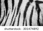 Beautiful White Tiger Fur  ...