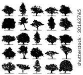 trees | Shutterstock .eps vector #30163765