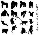 monkeys and apes | Shutterstock .eps vector #30166477