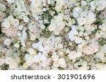 flower bouquets   bunch of... | Shutterstock . vector #301901696