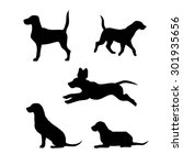 Stock vector breed of a dog beagle vector icons and silhouettes set of illustrations in different poses 301935656