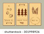 hand sketched templates with... | Shutterstock .eps vector #301998926