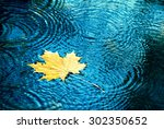autumn background  leaves drops ... | Shutterstock . vector #302350652