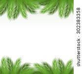 leaves of palm tree on white... | Shutterstock .eps vector #302383358
