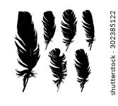 set feathers. vector   Shutterstock .eps vector #302385122