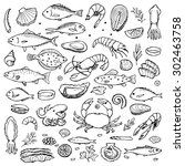 seafood hand drawn doodle... | Shutterstock .eps vector #302463758