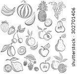 set from fruit and berries .... | Shutterstock .eps vector #302701406