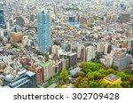 bird eye view of tokyo city... | Shutterstock . vector #302709428