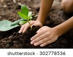 close up kid hand planting...   Shutterstock . vector #302778536