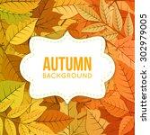 autumn background. orange...   Shutterstock .eps vector #302979005