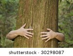 a person hugs a large cedar tree | Shutterstock . vector #30298087