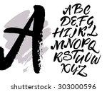 expressive brush calligraphic...   Shutterstock .eps vector #303000596