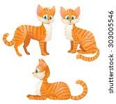 Cartoon Orange Tabby Cat Set....