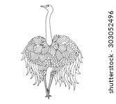 "bird named ""greater rhea""   Shutterstock .eps vector #303052496"