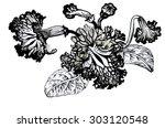 watercolor painting beautiful... | Shutterstock . vector #303120548